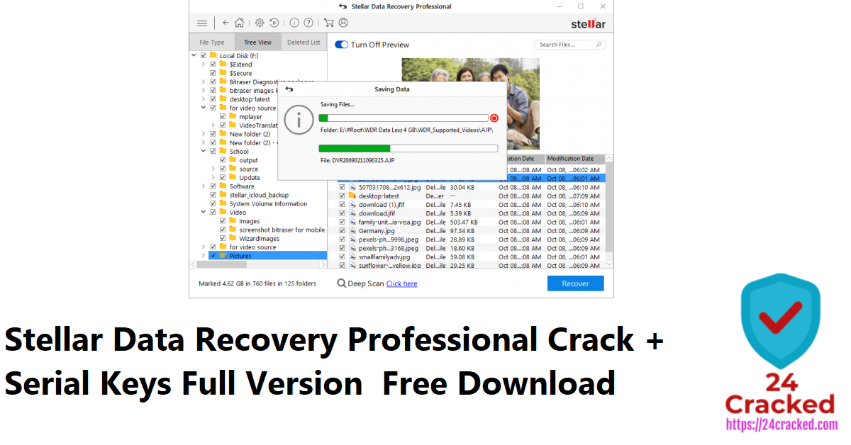Stellar Data Recovery Professional Crack + Serial Keys Full Version Free Download