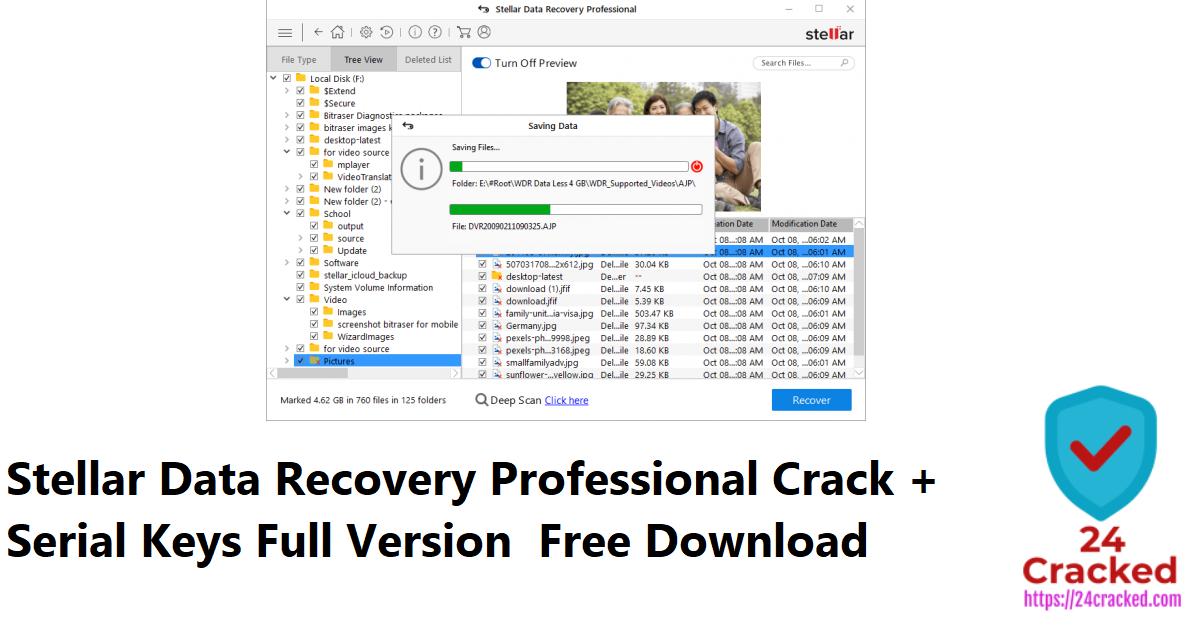 Stellar Data Recovery Professional Crack + Serial Keys Full Version Free Download